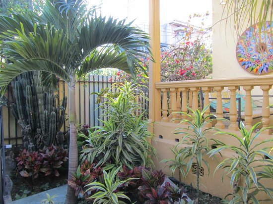 Hotel Mellow Yellow: Porch and more gardens