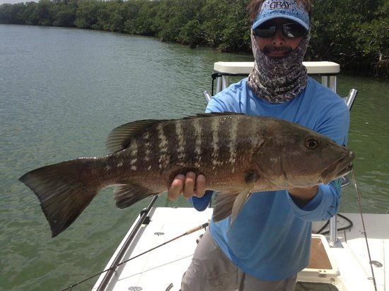 Cubera snapper picture of tarpon time fishing charters for Duck key fishing charters