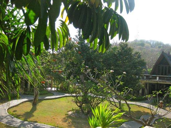 Hotel Vila Ombak:                                     view