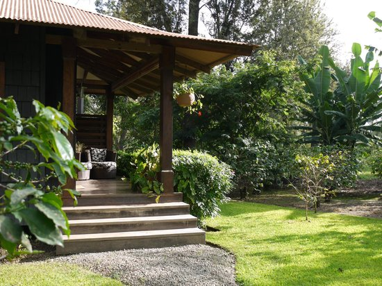 Arusha Coffee Lodge:                   suite entrance