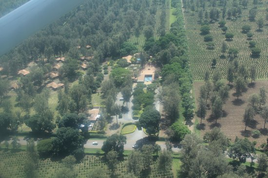 Arusha Coffee Lodge:                   view from the air!