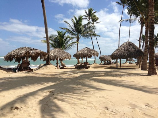 Zoetry Agua Punta Cana:                   beach in the afternoon