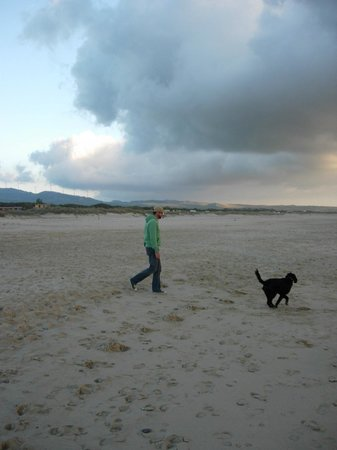 Arte Vida:                   great walks for dog