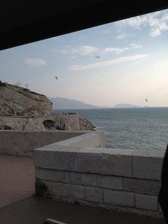 Petit Train Marseille : breathtaking (and windy) sights
