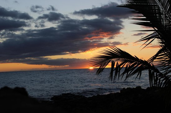 Maui Coast Hotel:                                     Say goodnight