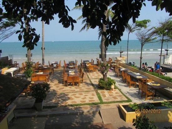 Coco51 Restaurant & Bar, by the Sea : Seafront Restaurant Thai International Cuisine Live Jazz Music Every Night