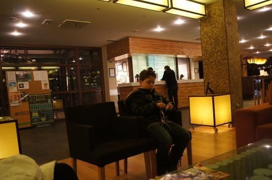 SOMMOS Hotel Aneto :                   hotel reception
