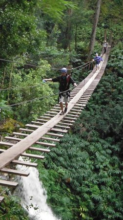 Big Island Eco Adventures II Zipline Canopy Tour:                   200 ft bridge over the waterfall