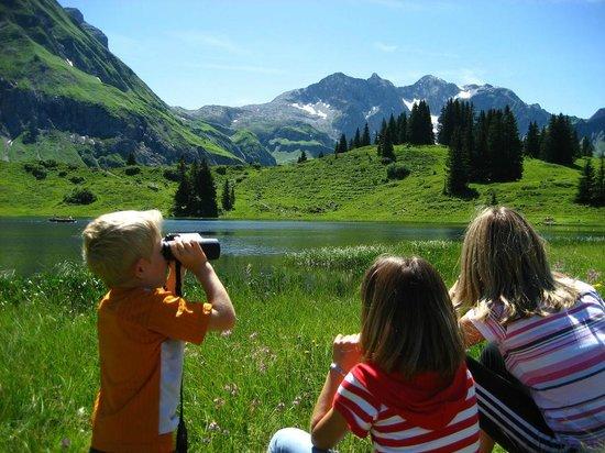 Naturparkhotel Ober-Lechtalerhof: Natur erleben