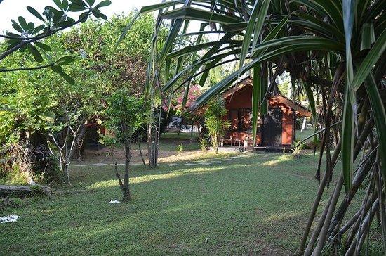 Dream Village:                   Garten
