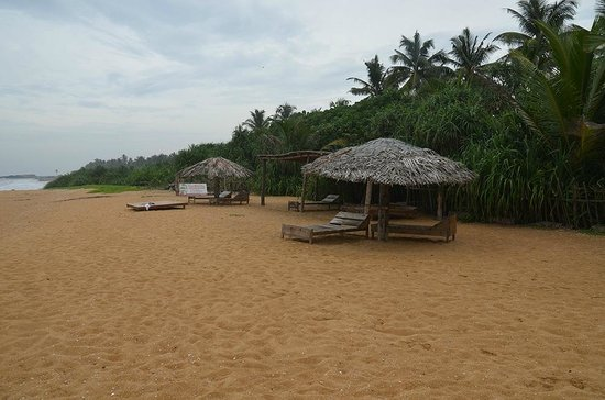Dream Village:                   Strand