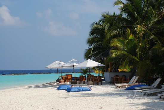 Kurumba Maldives:                   The Sand Bar - great for a sundowner