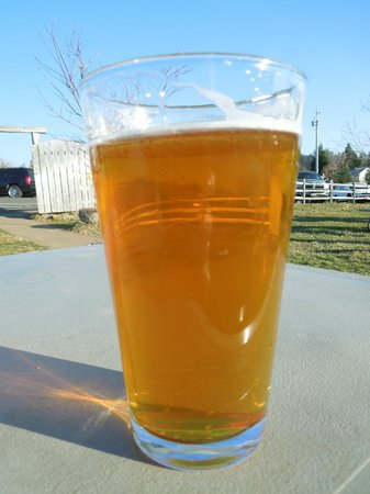 Jack Russell Brewery: Blueberry Brew...yum!