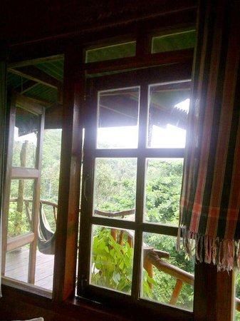 The Sanctuary Thailand:                   view of jungle surrounding Garden House