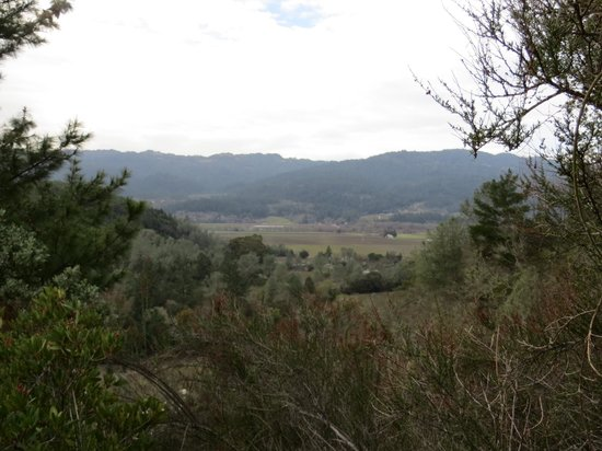 Calistoga Ranch, An Auberge Resort:                   View at top of hiking trail