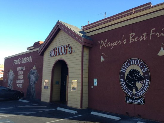 Big dogs cafe and casino argosy casino human resources