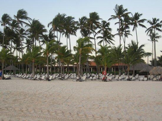 Secrets Royal Beach Punta Cana:                                     HUGE beach