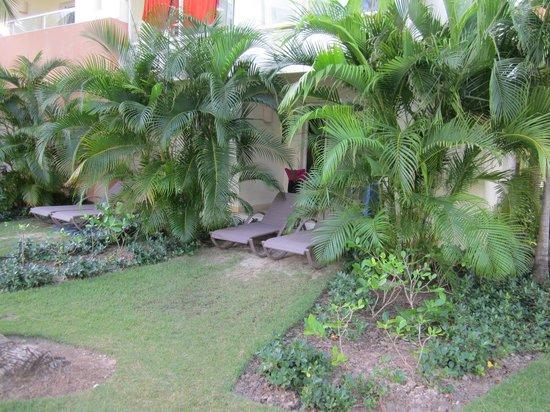 Secrets Royal Beach Punta Cana:                                     our backyard :)