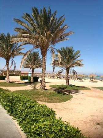 Amwaj Oyoun Hotel & Resort:                   Amwaj private beach