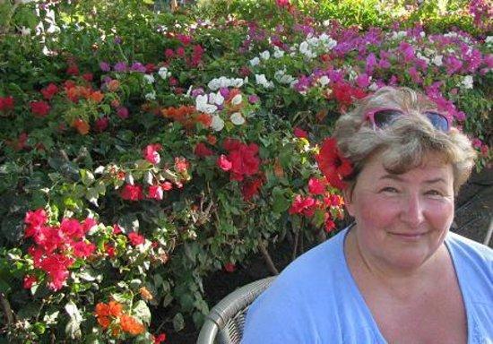 Jaz Mirabel Beach:                   Ja w kwieciu przy jednym z barów