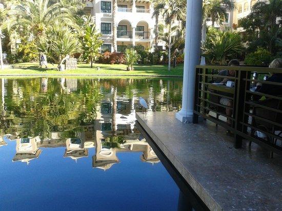 Gran Melia Palacio de Isora Resort & Spa:                   Terraza Pangea