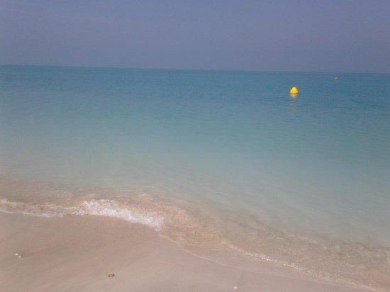 The St. Regis Saadiyat Island Resort :                   mare davanti st regis