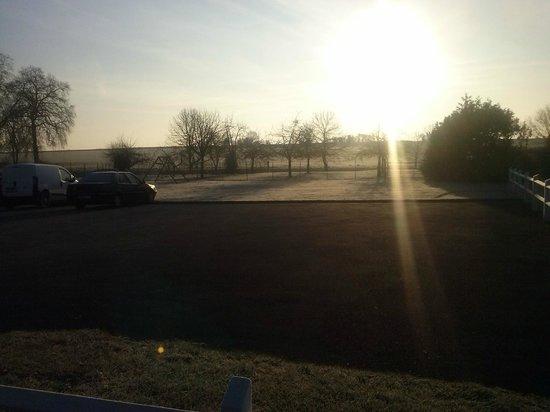 Les Oiseaux de la Mer:                   le grand parking au petit matin