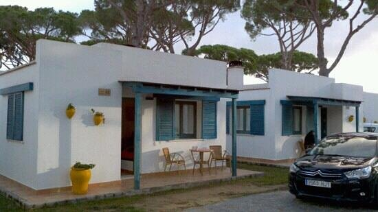 Camping Pinar San José:                   the bungalows!