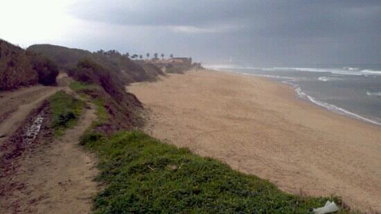 Camping Pinar San Jose:                   the nearest beach.