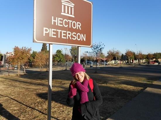 海克特‧彼特森博物館照片
