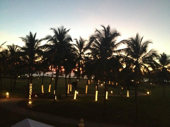 Taj Exotica Goa:                   Christmas Trees!