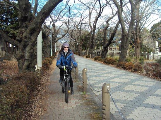 東京自行車行程一日導遊