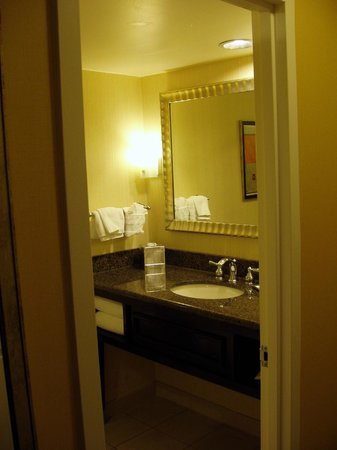 Hilton Arlington:                   Bathroom