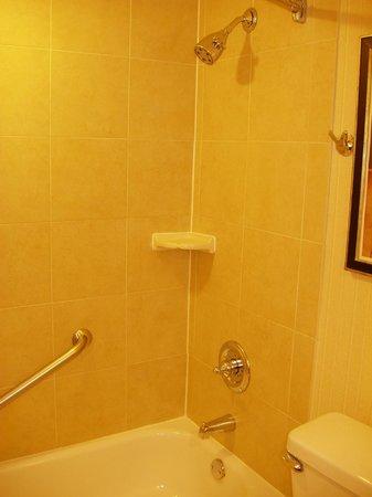 Hilton Arlington:                   Shower                 