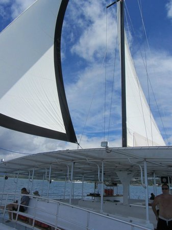 Planet Dolphin Cruises: Sails up for part of the cruise.