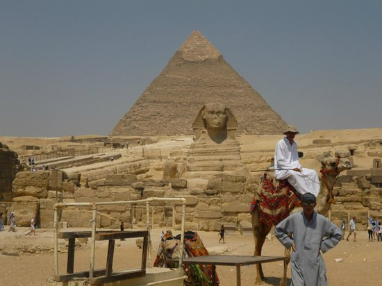 فندق جاز بلفيدر:                   Pyramids                 