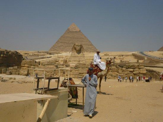 فندق جاز بلفيدر:                   Trip to Cairo, Pyramids                 