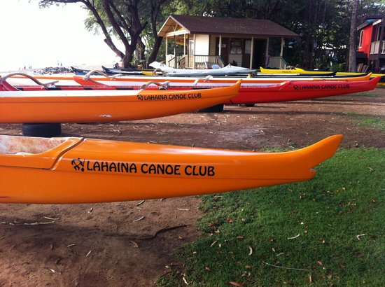 Maui Paddle Sports:                   Outrigger Canoes Waiting for Paddlers in Maui