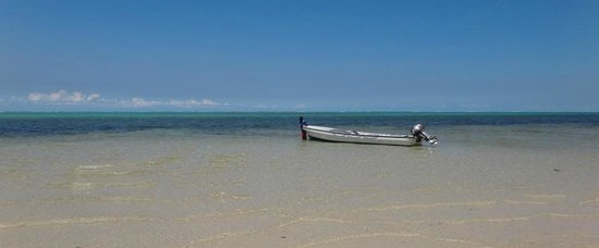 Waidroka Bay Resort:                   Boat at white sand beach