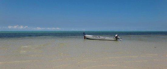 Waidroka Bay Resort :                   Boat at white sand beach