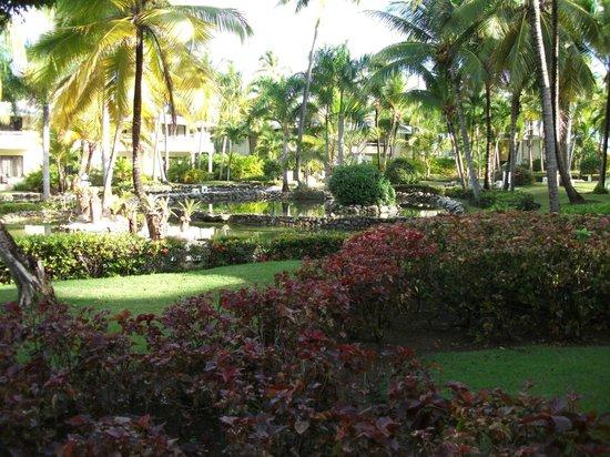 Paradisus Punta Cana:                                                       GARDENS