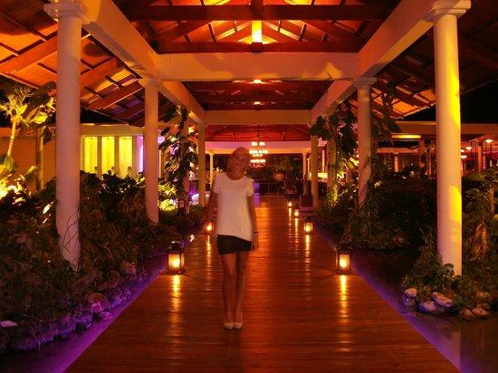 Paradisus Punta Cana照片