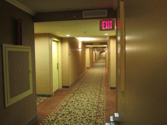 Hampton Inn Parsippany: Hallway