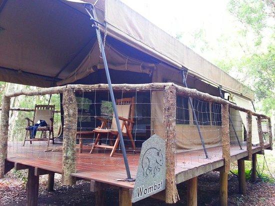 Paperbark Camp:                   Original Tent (Wombat)