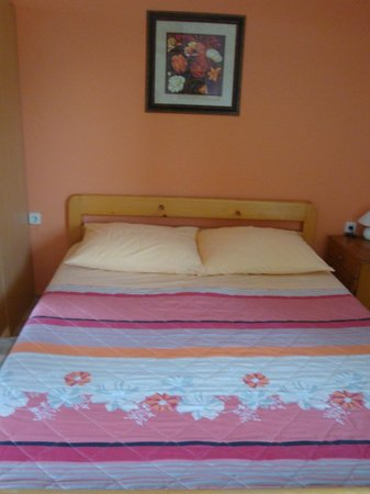 Pansion Vukovic : Bed in our room