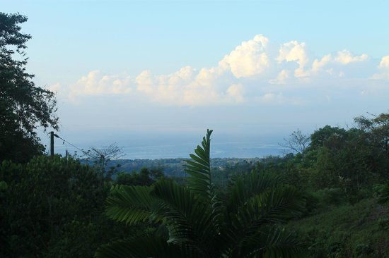 Oxygen Jungle Villas:                   View from Villa #5