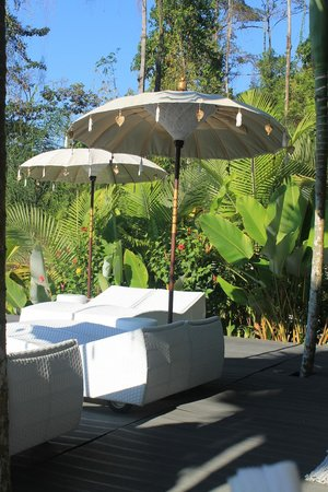 Oxygen Jungle Villas:                   Lounge area by the pool