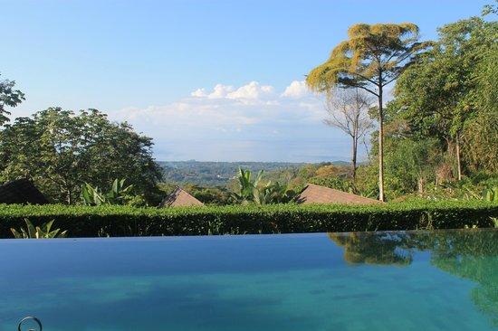 Oxygen Jungle Villas:                   Morning at Oxygen.