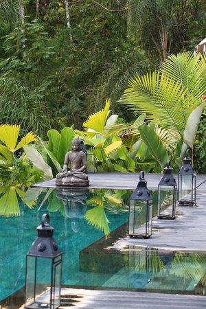 Oxygen Jungle Villas:                   Pool area
