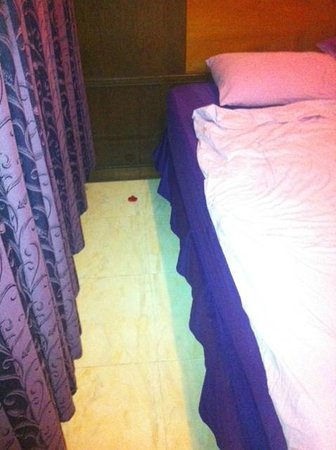 Rin Beach Resort:                   Used condom in room